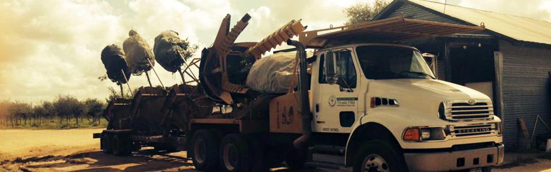 Tree Truck Transplanting